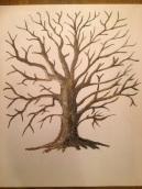 Bildresultat för träd med stammar och grenar tecknat